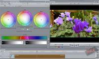 [Final Cut] Videotutorial: Correzione Colore Secondaria