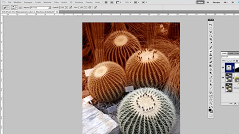 Photoshop CS5 – Maschere Di Livello (Parte 2)