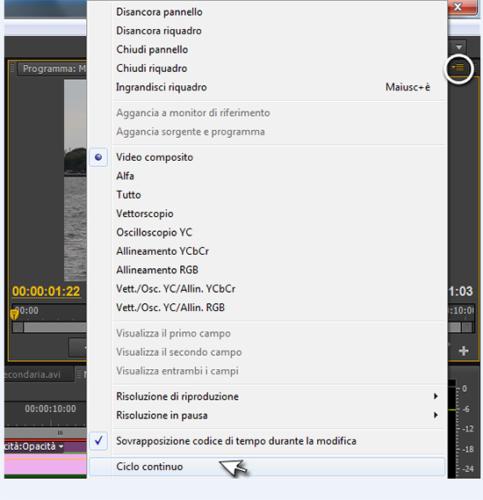 Premiere Pro CS6 - Modifica Effetti Durante Anteprima