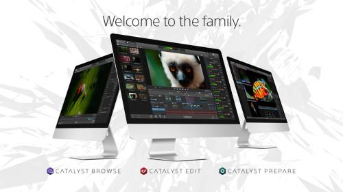 Sony Catalyst