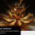 Webinar MAXON: Worflow per la simulazione base di fluidi con Cinema 4D & RealFlow