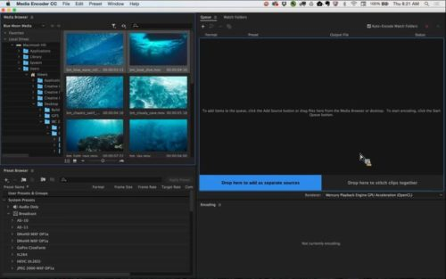 Adobe Creative Cloud 2016 for Video