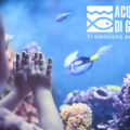 Userfarm - Acquario di Genova